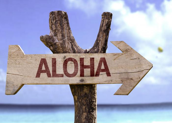 centre-de-beaute-aloha-nous-joindre.png